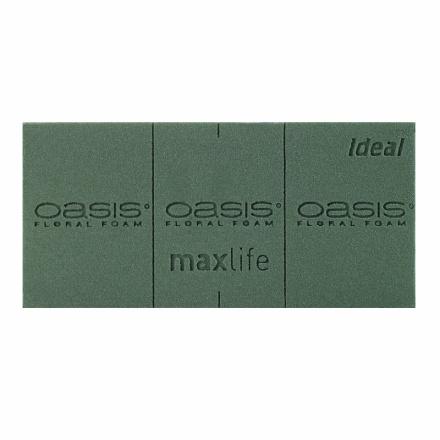 OASIS® IDEAL Floral Foam Maxlife