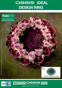 OASIS® IDEAL Design Ring Flyer